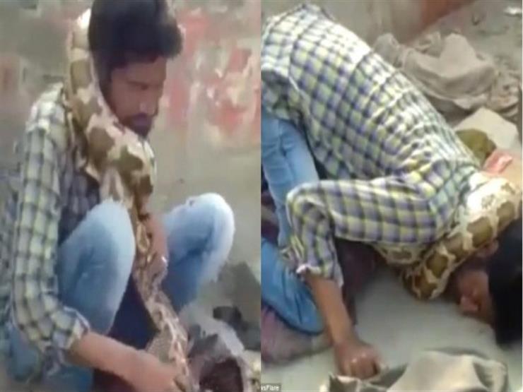 بالفيديو.. ثعبان يغدر بساحر ويخنقه خلال أحد العروض