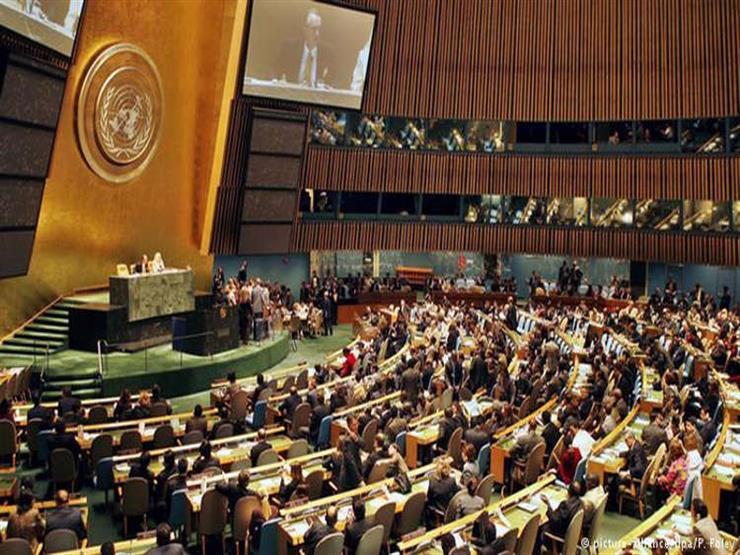 الأمم المتحدة تثني على جهود مصر  للنهوض بالمرأة المصرية