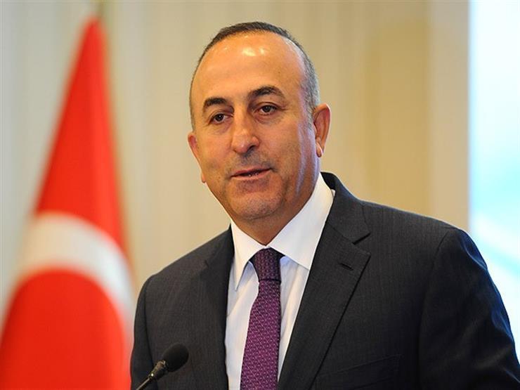 وزيرا الخارجية التركي والنمساوي يحاولان إصلاح العلاقات