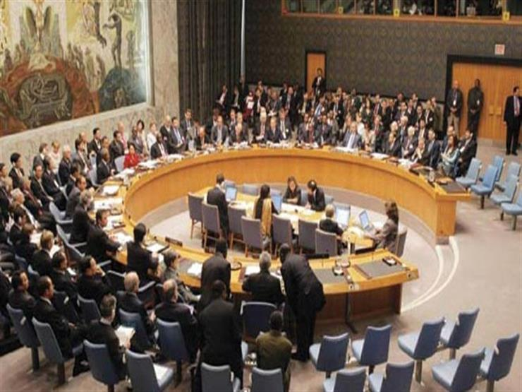 مصر تشارك في مفاوضات إصلاح وتوسيع مجلس الأمن بنيويورك