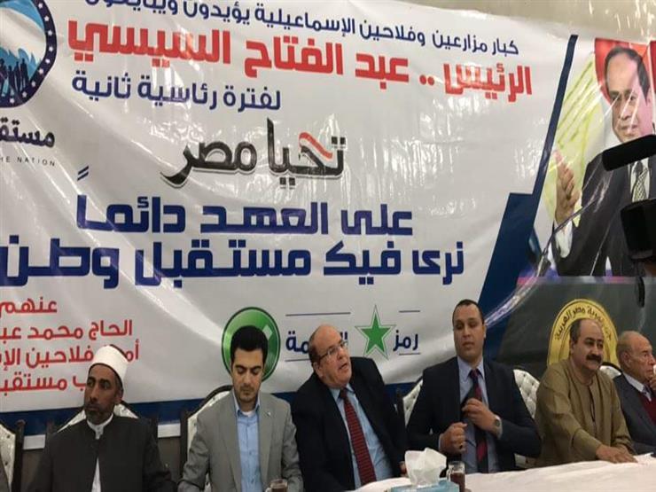 برلماني بالإسماعيلية: ندعم  السيسي  ضد مخططات النَيل من الدو...مصراوى