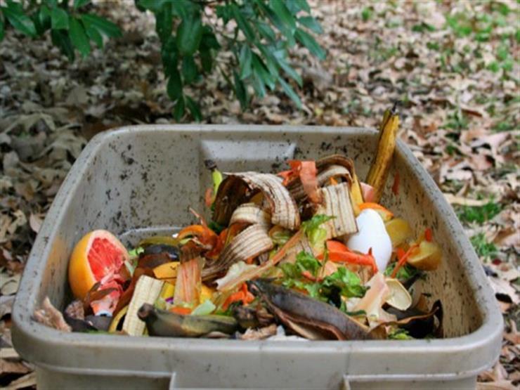 8 أنواع أطعمة المتبقي منها له فوائد عديدة.. تعرف عليها
