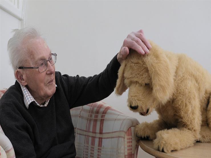بالفيديو:كلب آلي يساعد كبار السن ومرضى الزهايمر