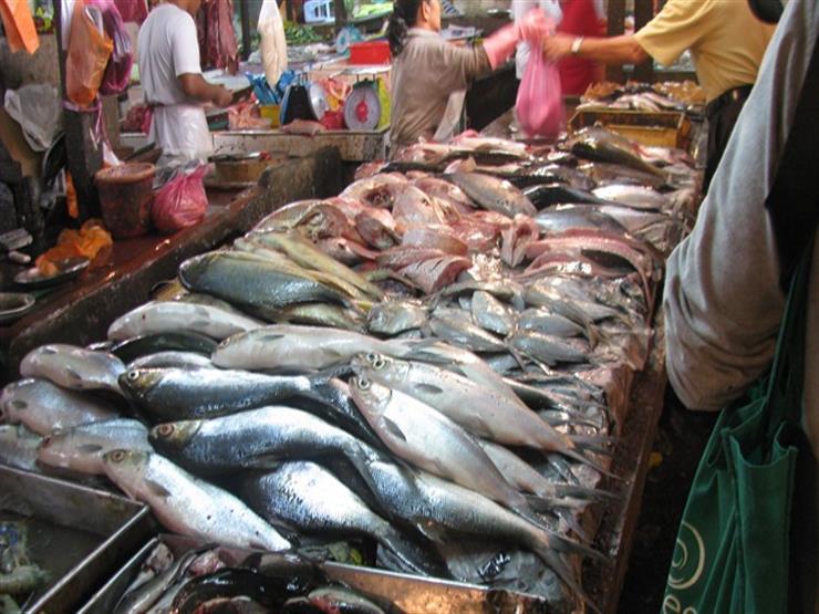 البلطي يرتفع.. أسعار السمك في سوق العبور اليوم