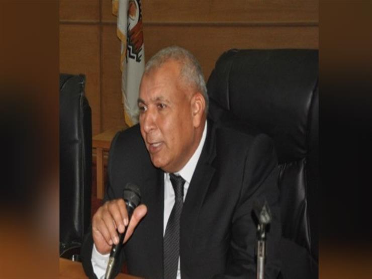 محافظ الوادي الجديد يشكل لجنة للتدخل العاجل في التعديات على ...مصراوى