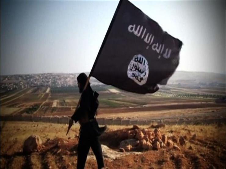 طابة للأبحاث : 13% من شباب 18 دولة عربية يعتبرون  داعش  على...مصراوى