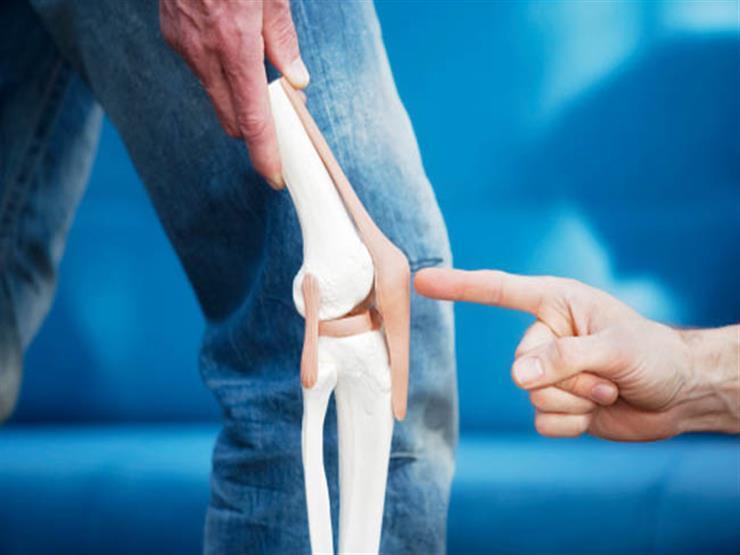 زيادة استهلاك البروتينيات يحسن صحة العظام