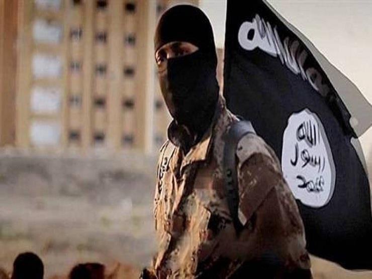مقتل أكثر من 120 إرهابيًا من  داعش  خلال معارك مع الجيش السو...مصراوى