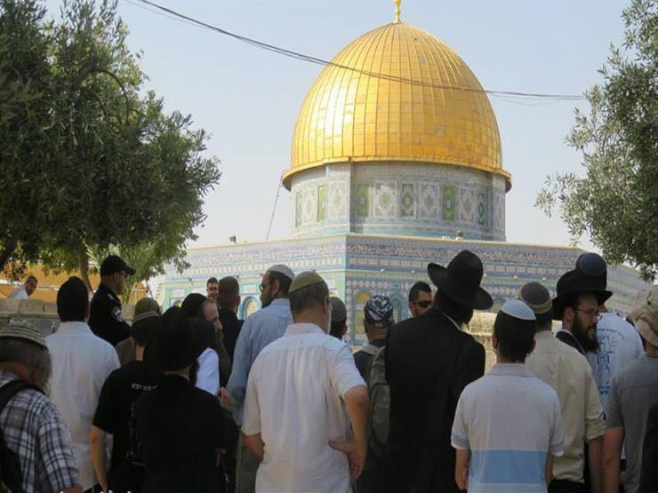مباركة عقد زواج يهودي في ساحات المسجد الأقصى تحت حماية قوات الاحتلال
