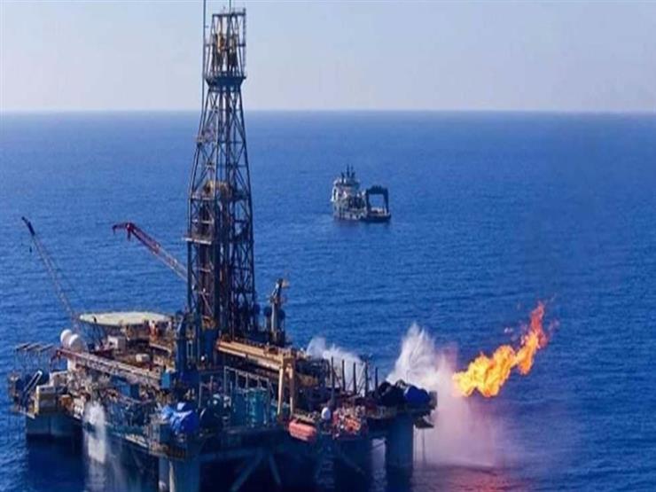 متحدث البترول: مصر أصبحت لاعبا رئيسيا في صناعة الغاز...مصراوى