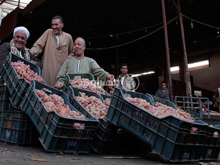 فيديو- زيادة السولار ترفع أسعار الفاكهة في سوق الجملة