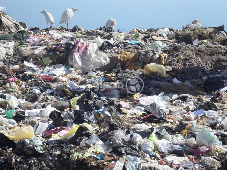 رئيس حي الدقي: القمامة متراكمة منذ 15 عامًا في هذه المنطقة
