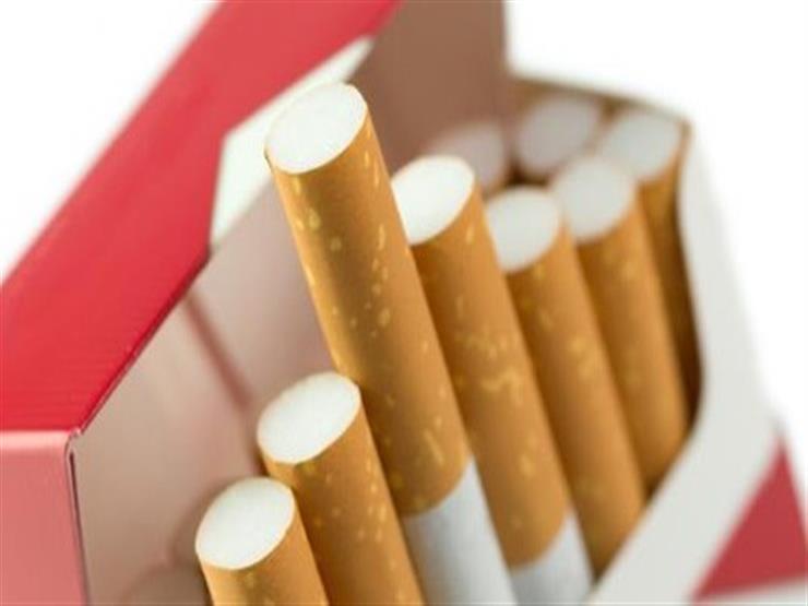 بالفيديو- تفاصيل الزيادة الجديدة في أسعار السجائر والمعسل