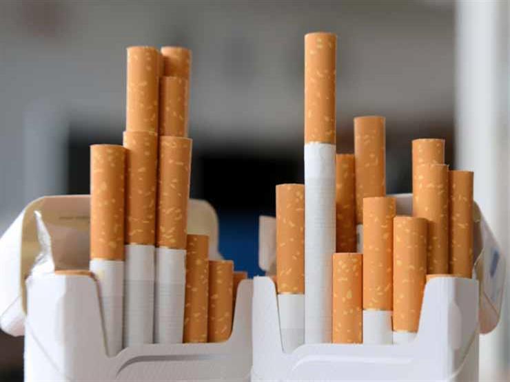 """""""280 مليون سيجارة يوميًا"""".. تعرف على قيمة الإنفاق السنوي على السجائر والمعسل"""