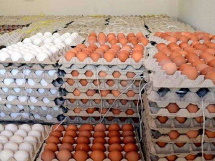 ارتفاع أسعار كرتونة البيض والدواجن البلدي بمنتصف تعاملات الأسبوع