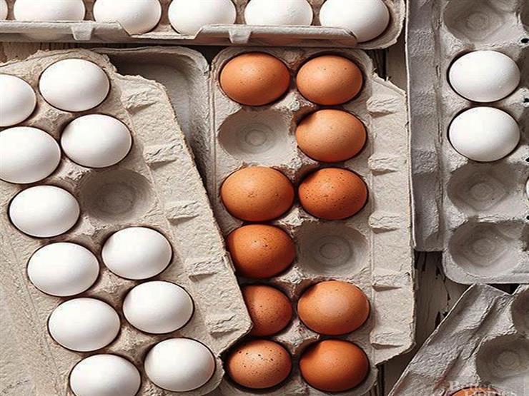 الحكومة تكشف حقيقة طرح بيض بلاستيكي من الصين