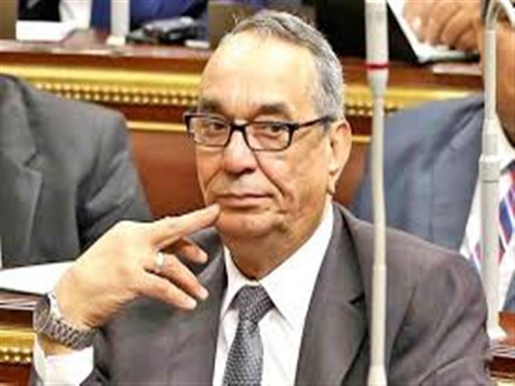 """وكيل """"دفاع النواب"""": 3 ملايين أجنبي في مصر يمكنهم الاستفادة من """"منح الجنسية"""""""