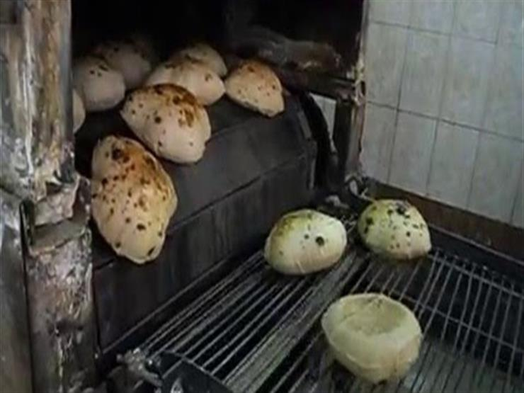ضبط 55 قضية تموينية و23 مخبزا مخالفا في الجيزة