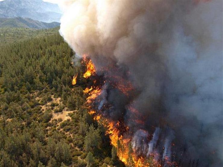 رجال الإطفاء يحاولون إخماد الحريق في جزيرة إيفيا اليونانية