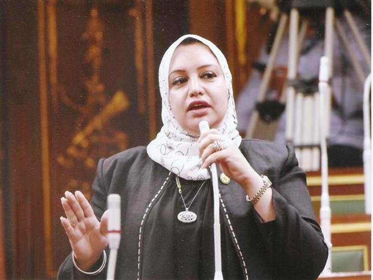 """برلمانية تدين بيان """"العفو الدولية"""" بشأن الجمعيات الأهلية: """"منظمة مشبوهة"""""""