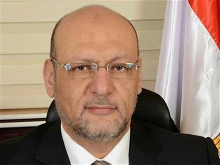 """رئيس """"المصريين"""": لقاء السيسي و""""لودريان"""" يعكس ثقل مصر في المنطقة"""