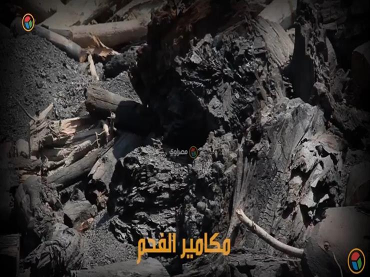 """""""مكامير"""" رحلة الشقاء لصناعة الفحم المصري"""