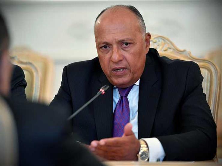 سامح شكري يتسلم صورة من أوراق اعتماد سفير إثيوبيا الجديد