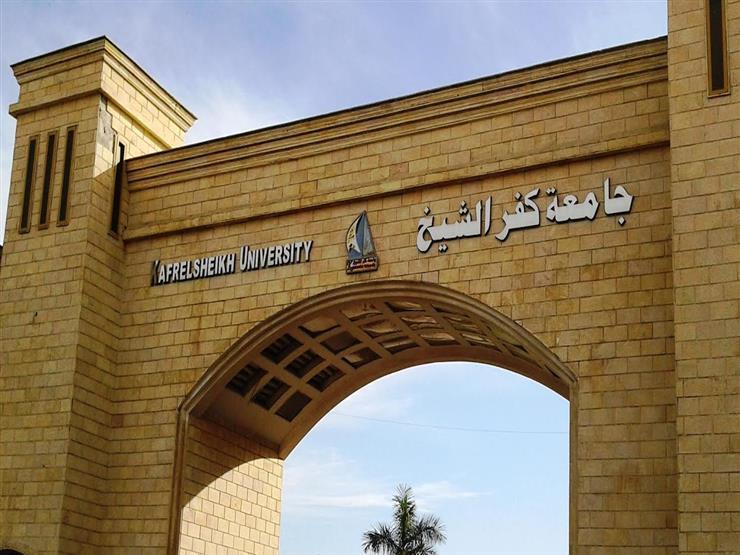 قرار جمهوري بتعيين رئيس جديد لجامعة كفر الشيخ