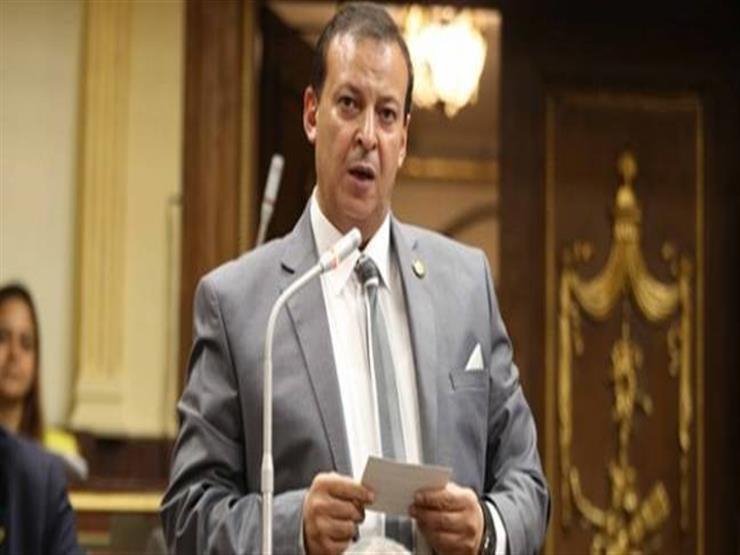 """برلماني يشيد بمبادة جامعة حلوان لتطوير عشوائيات """"عرب راشد"""""""