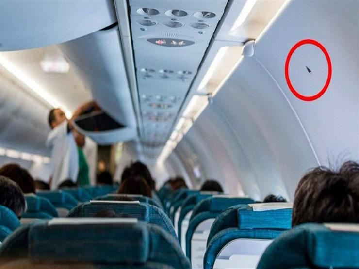 لماذا يوجد مثلثات فوق بعض المقاعد في الطائرة؟