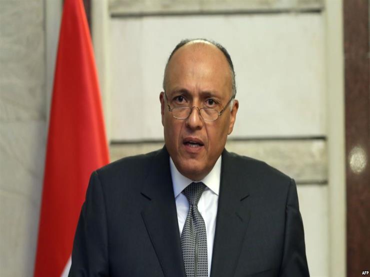 """شكري: مصر لم تتخذ موقفها من """"صفقة القرن"""""""