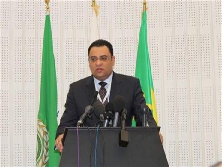 """متحدث الجامعة العربية: قمّة تونس لن تناقش """"عودة سوريا"""""""