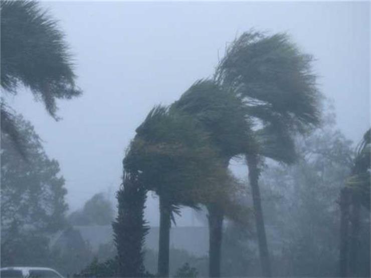 """صقيع ورياح تصل حد العاصفة.. """"الأرصاد"""" تعلن تفاصيل طقس الثلاثاء"""