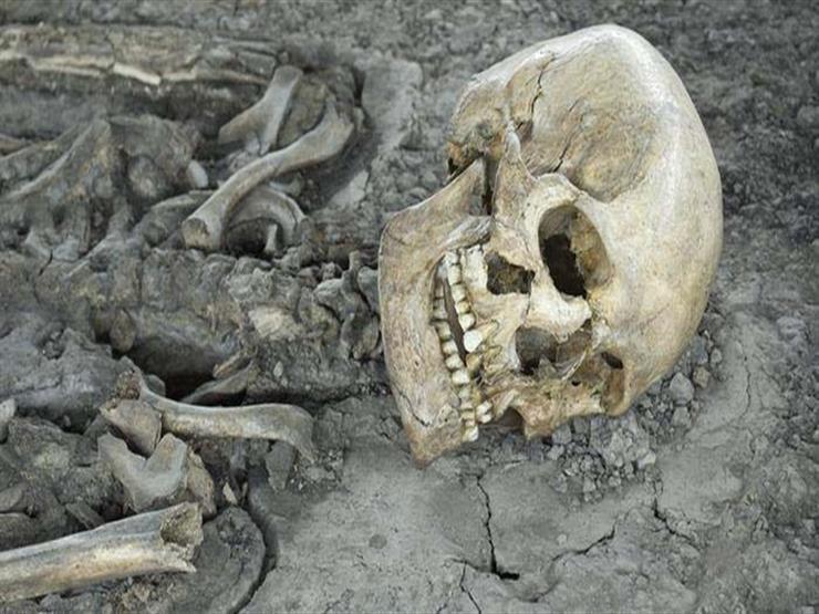 """""""هيكل عظمي"""".. قصة العثور على مصري بإيطاليا اختفى منذ 15 عامًا"""