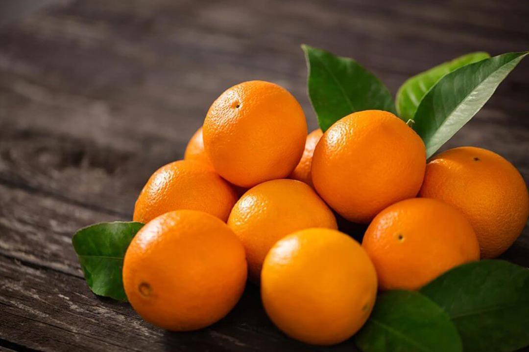 البرتقال واليوسفي فواكه شتوية لذيذة.. هل تسبب حصوات الكلى؟
