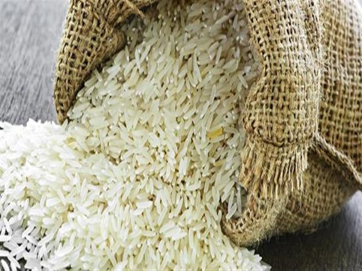 الإحصاء: زيادة متوسط نصيب الفرد من القمح والأرز في 2017
