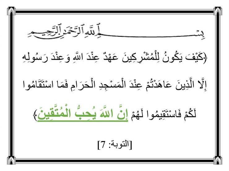 هل الله سبحانه وتعالى يحب؟.. القرآن الكريم يجيب (4)