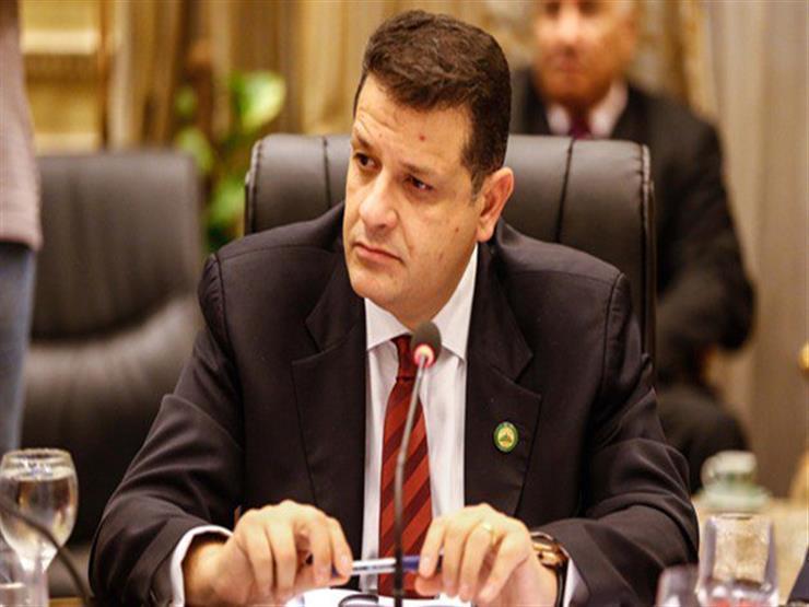 رئيس أفريقية النواب: السيسي لديه رؤية واضحة لتوجه مصر نحو القارة السمراء