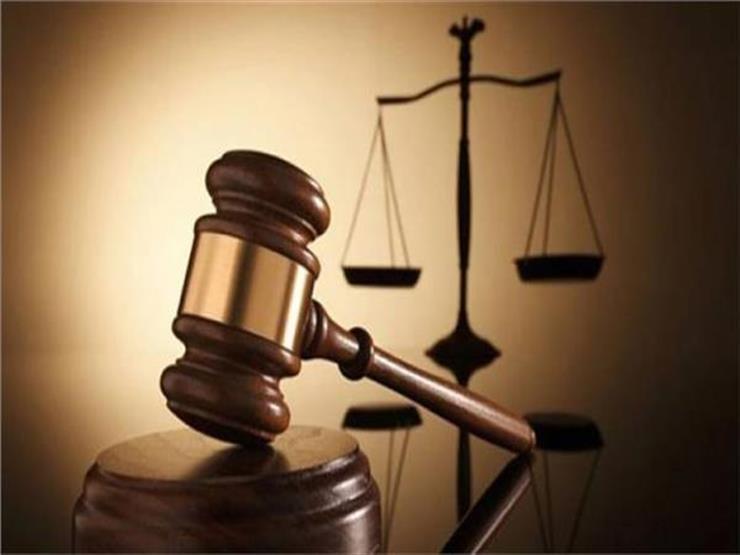 """""""الجنايات"""" تُجدد حبس 16 متهمًا في قضية """"خلية الأمل"""" 45 يومًا"""
