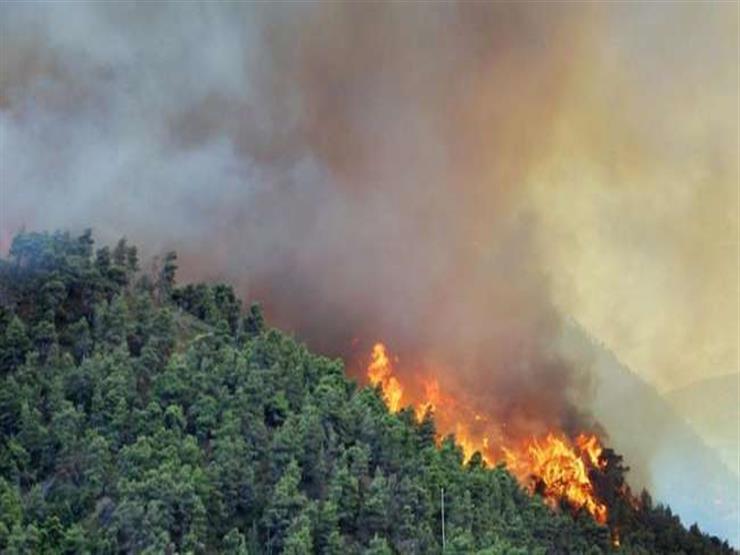 إجلاء 100 ألف شخص من لوس أنجلوس الأمريكية جرّاء حرائق الغابات