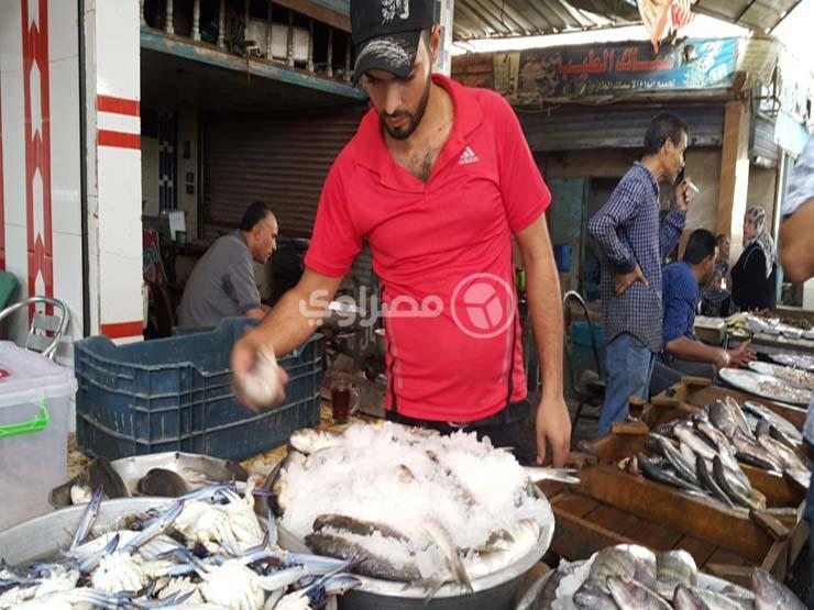 أسعار الأسماك والمأكولات البحرية في سوق العبور اليوم