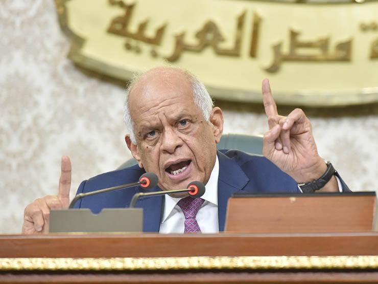 """""""محدش يقدر يجيب البلد ورا"""".. عبدالعال: بعض الوزراء لا يؤدون عملهم كما يجب"""