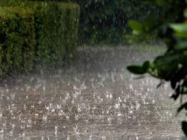 """""""انتظروا تحسُّن الظروف الجوية"""".. """"الزراعة"""" تنصح المزارعين في المحافظات"""