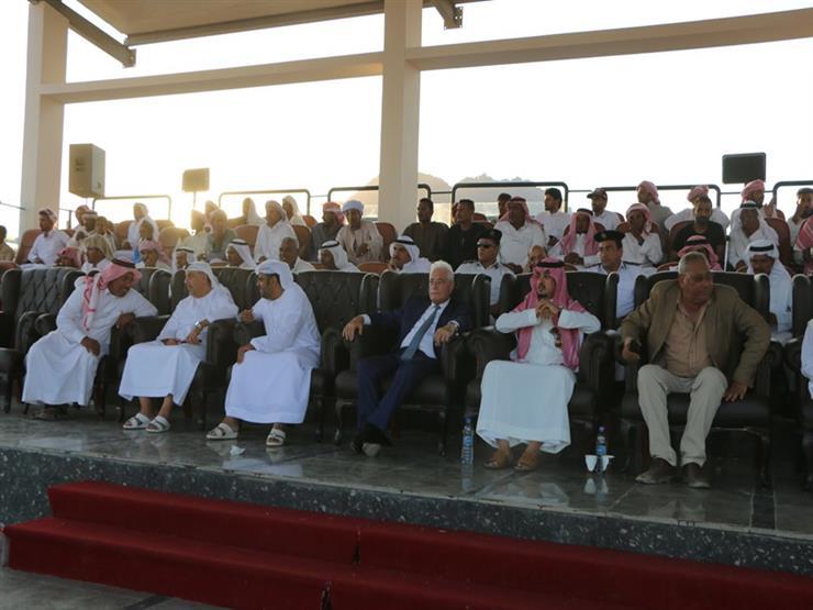غدًا.. الانطلاق الرسمي لمهرجان شرم الشيخ الأول للهجن (صور)   مصراوى
