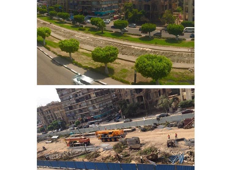 """""""يُعاد زراعتها"""".. أول تعليق حكومي على قطع أشجار بمصر الجديدة"""
