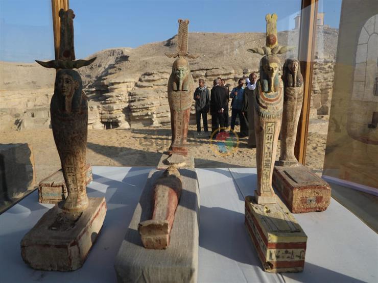 مدير آثار سقارة: الاكتشاف الجديد يعكس اهتمام المصريين القدامى بالحيوانات