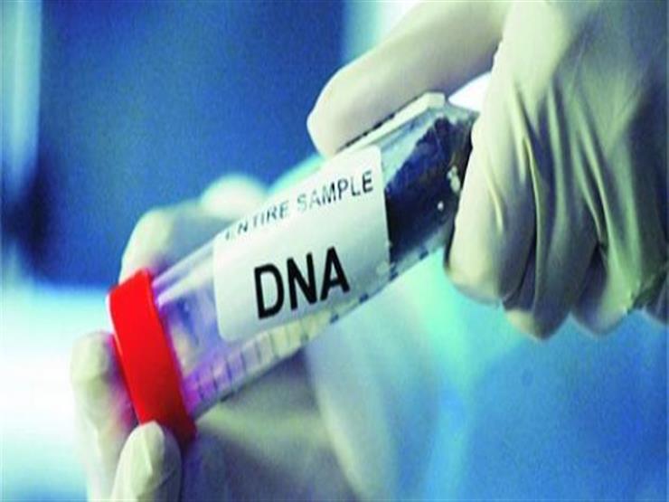 """النيابة تتسلم نتيجة تحليل الـDNA  لطفلي حضانة أوسيم.. والوالدان: """"خدوهم"""""""