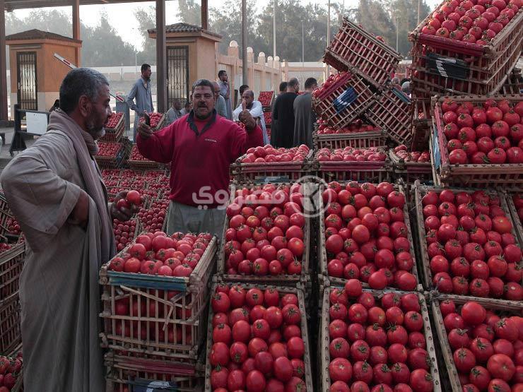 الخضروات والأرز يقودان معدل التضخم الشهري إلى الارتفاع في يناير
