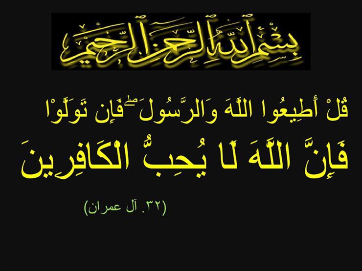 هل الله سبحانه وتعالى يحب ولا يحب؟.. القرآن الكريم يجيب (16)
