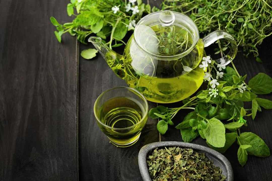 الشاي الأخضر يحفز الرغبة الجنسية عند السيدات.. حقيقة أم خرافة؟